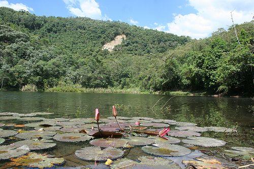 lagos cerca a bogota